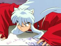 Inuyasha%20on%20the%20scent
